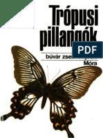 Mészáros & Gál - Trópusi pillangók