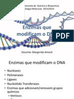 Enzimas Que Modificam o DNA