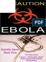 ebola speech outline