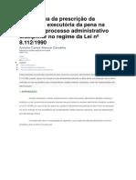 O problema da prescrição da pretensão executória da pena na esfera do processo administrativo disciplinar no regime da Lei nº 8