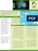 Papua Deforestation Brochure