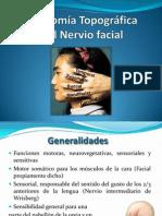 Anatomiatopografican Facial 120825233450 Phpapp02