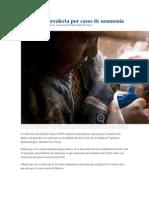 14/11/13 noticiasnet Emite SSO prealerta por casos de neumonía