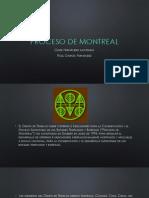 Proceso de Montreal