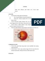 Definisi hingga patogenesis uveitis