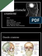 Traumatismele Craniene