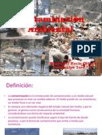 Contaminación Ambiental magda