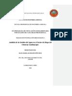 tesina - analisis