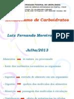 Metabolismo de Carboidratos