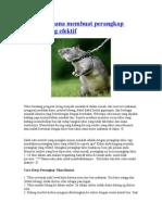 Cara Sederhana Membuat Perangkap Tikus Yang Efektif