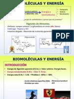 Biomoléculas TERCER BLOQUE