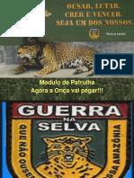 patrulha 2010.ppt
