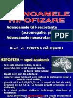 Adenoamele Hipofizare Ian 2012