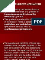 [7] Physiology Countercurrent Mech GUS-K7