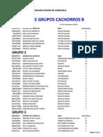 RANKING GRUPOS CACHORROS B