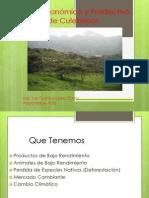 Futuro Económico de Culebreros