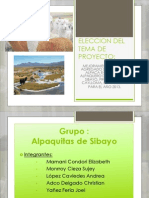 Alpaquitas de Sibayo