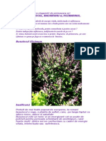 3 Plante Miraculoase
