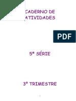 3 trim Gabarito22102010191018