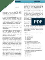 4to Grado - Bloque 2 (2013-2014)