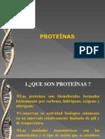 Proteinas - Salgado