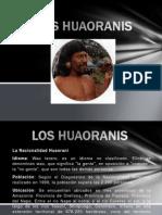 loshuaoranis
