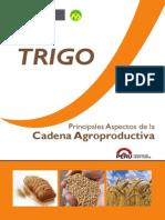 Trigo Cadena 2013