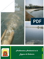 Gestion Laguna de Oxidacion