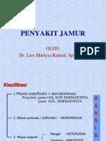 Jamur (Full Picture)