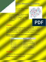 Cofactors Enzymes, Ribozymes and Vitamins