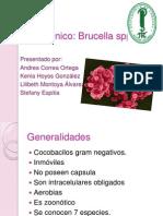 Caso Clinica Brucella