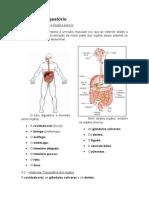 Apostila - Anatomofisiologia Parte II