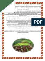 Sistema de producción agrícola