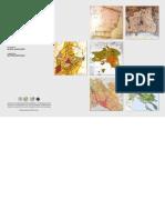Άτλαντας των Πολεοδομικών και Χωροταξικών Σχεδίων 1828-2011