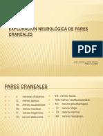 exploracinneurologicadeparescranelaes-120117114149-phpapp01