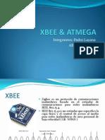 XBEE & ATMEGA