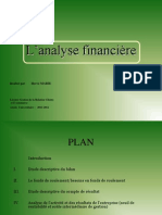 Analysesfinancire Livre Vert