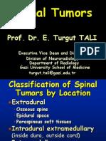 Spinal Tumors Intra-Extra ( Turgut Tali)