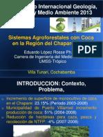 Present Sistema AGroforestal y COCA-Eduardo Lopez.pdf