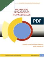 Proyectos Transversales Claudia Parra