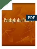 Patologia e Recuperacao Das Pinturas