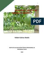 Guía Maracuyá-INTEP-2011