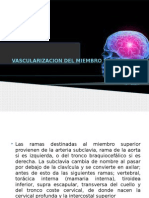 Vascularizacion Del Miembro Superior