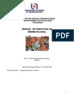 Manualdepracticas29-1528