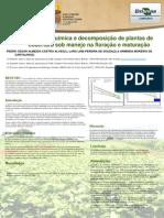 Composicao Quimica e Decomposicao de Plantas de Cobertura Sob Manejo Na Floracao e Maturacao