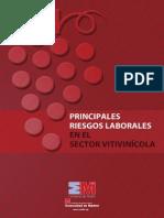 Principales Riesgos Sector Vitivinicola
