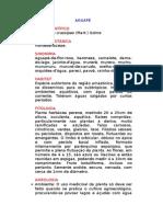 Aguapé - Eichhornia crassipes (Mart.) Solms - Ervas Medicinais – Ficha Completa Ilustrada