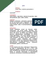 Aipo - Apium graveolens L. - Ervas Medicinais – Ficha Completa Ilustrada