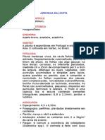 Azedinha-da-Horta - Rumex acetosa L. - Ervas Medicinais – Ficha Completa Ilustrada