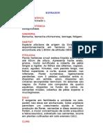 Borragem - Borago officinalis L. - Ervas Medicinais – Ficha Completa Ilustrada